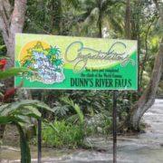 aunns river ocho rios